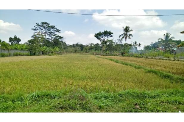 Rp6,33mily Tanah Dijual