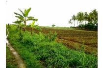 Tanah Pinggir Jalan Dan Pinggir Pantai Di Pandeglang, Banten