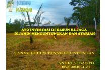 Tanah Kebun dijual di Kabupaten Bogor Barat Jawa Barat untuk Investasi