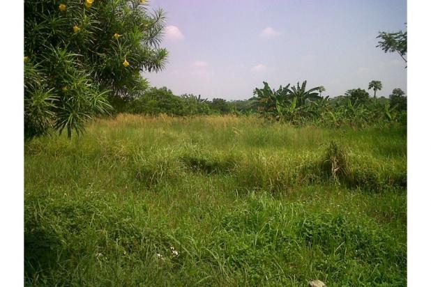 Rp900mily Tanah Dijual