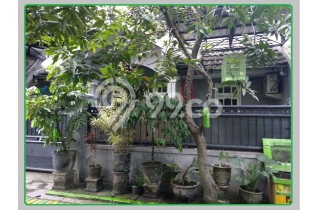 Rumah Nyaman Tengah Kota Magersari Asri Sidoarjo 17150253
