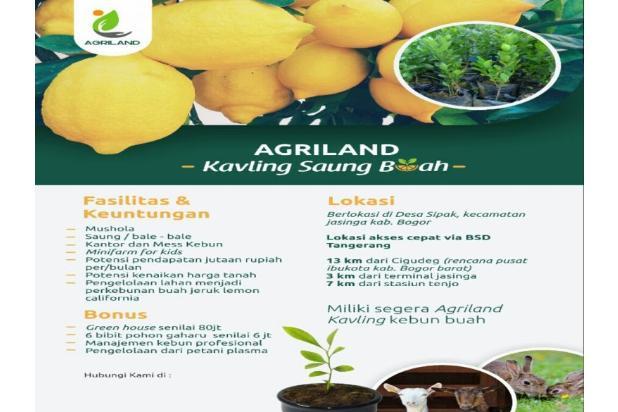Kavling Saung Benah 12299490