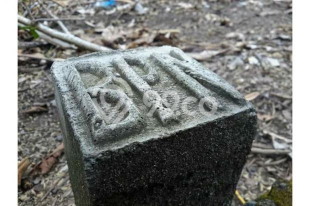 Rumah Nuansa Asri di Bekasi 12898076