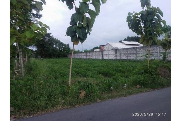 Rp317jt Tanah Dijual