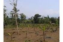 Tanah Di Pelabuhan Ratu - Sukabumi SHM Di Jual Murah