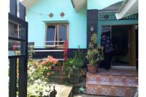 Rumah-Muaro Jambi-10