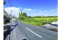 Dijual Tanah Pinggir Jalan Utama Umalas II
