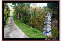 Spesial sangat Cantik Tanah 4.100 m2 di Tabanan Selemadeg A239