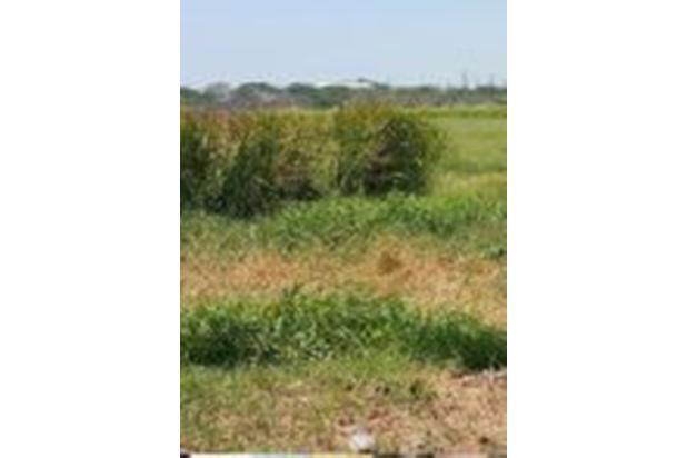 Rp5,62mily Tanah Dijual