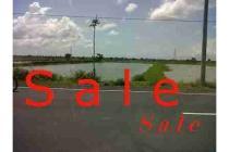Dijual Tanah Strategis dan Aman di Watang Rejo Gresik