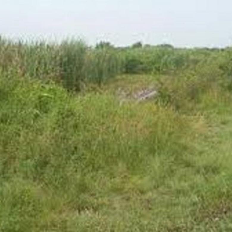 Murah Lokasi Tanah Sangat Strategis di GRAHA NATURA
