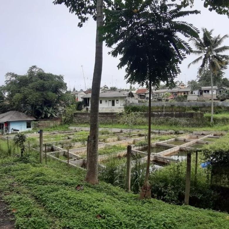 Komersial-Bogor-1