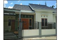 Rumah Murah Jogja Dijual di Jl Palagan Dekat Kampus UGM