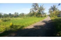 Tanah 800 Meter di Jalan Kaliurang km 11 Sleman Yogyakarta