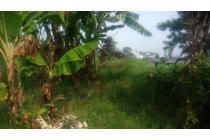 Tanah View Bagus Luas 1500m Sariwangi Cibaligo