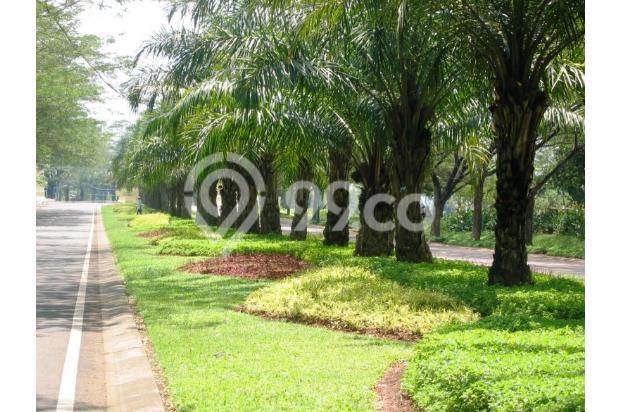 Rumah Hook Chrysant 37/159 Citra Indah City 4428947