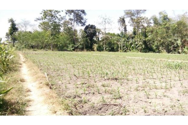 Rp600jt Tanah Dijual