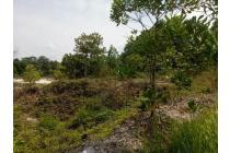 Dijual Tanah Strategis di Bombara Pasir Putih Tenayan Raya Pekanbaru