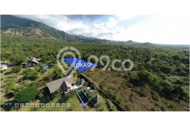 GREEN LAND IN PEMUTERAN NORTH BALI 12397945