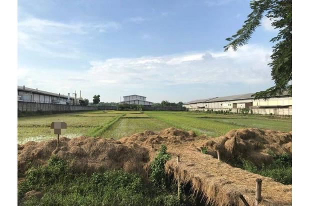 Rp39,3mily Tanah Dijual