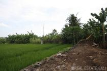 Land with stunning rice field view for sale in Nyanyi - Tabanan