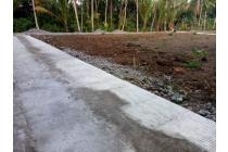 Tanah Kapling Dramaga Luas 100-an M2 Cuma 10 Menit Kampus IPB