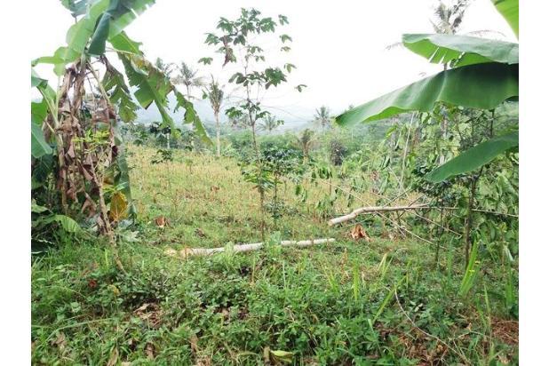 Tanah Bebas Banjir dan Siap Bangun Dijual di Anjarsari 15627521