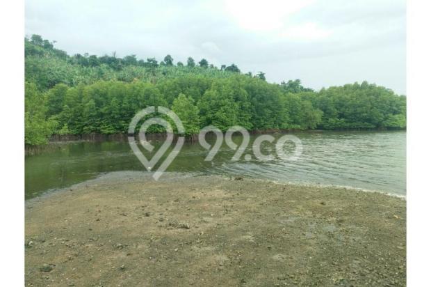 Jual Tanah Berdampingan dgn Pantai Mutun Lempasing -Lampung