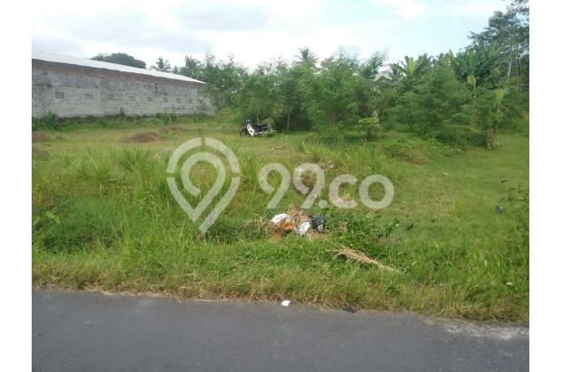 Tanah Luas d Jalan Magelang Jogjakarta 17699151