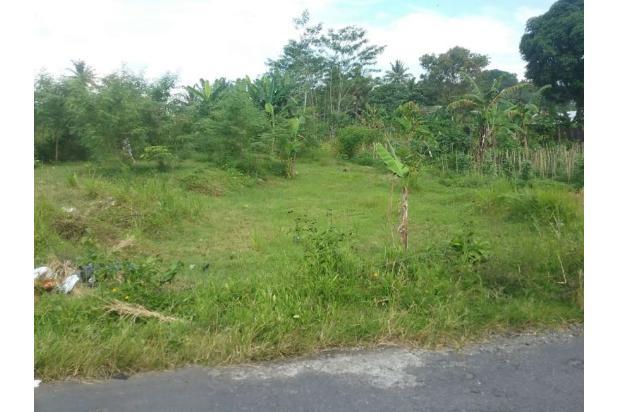 Tanah Luas d Jalan Magelang Jogjakarta 17699152