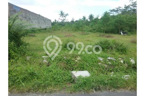 Tanah Luas d Jalan Magelang Jogjakarta 17699156