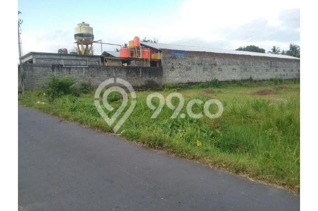 Tanah Luas d Jalan Magelang Jogjakarta 17699159