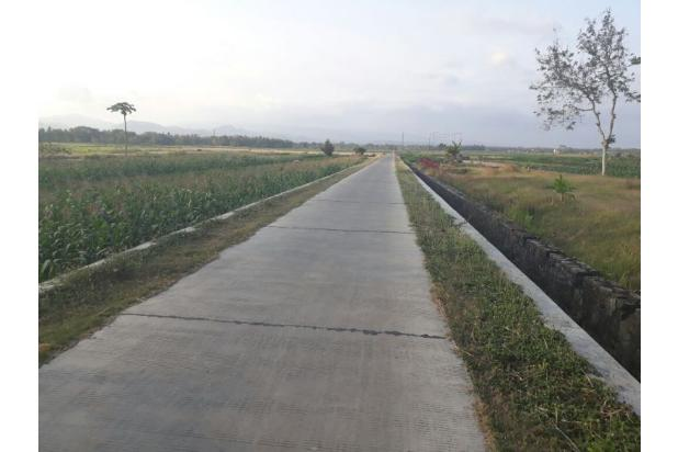 Beli Tanah Kaveling  Cara Paling Masuk Akal untuk Punya Rumah 13244469