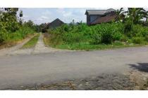 tanah strategis murah di samping perum pemda provinsi banguntapan JPS