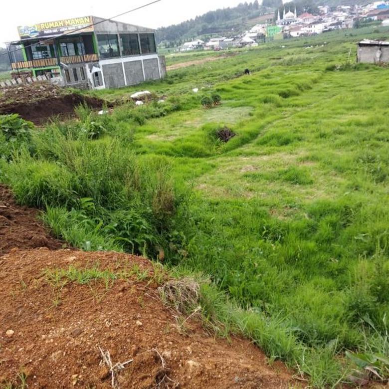 Tanah Luas Strategis Di Dieng, Wonosobo