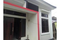 Info Rumah Daerah Tegalrejo Jogja, Rumah Murah Dekat Samsat Kota