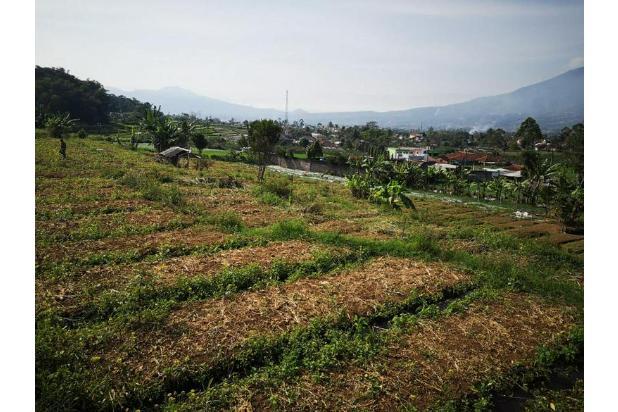 Rp5,96mily Tanah Dijual