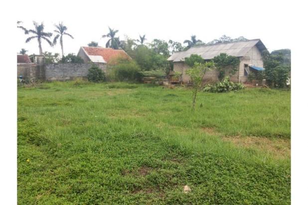 Rp19,2mily Tanah Dijual