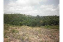 Tanah-Rokan Hulu-2