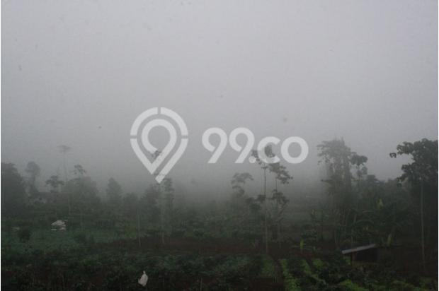 Investasi Kavling Villa Puncak Cipanas, di ketinggian 1000 mdpl 16225202