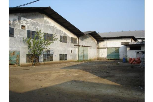 Pabrik Kapuk Kamal Muara (Ukuran 3 Ha) 20965121