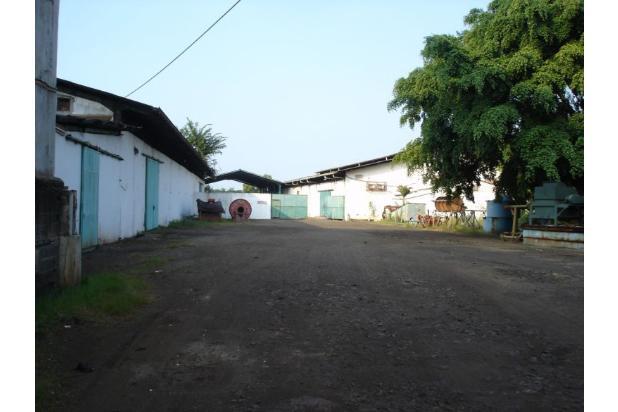 Pabrik Kapuk Kamal Muara (Ukuran 3 Ha) 20965123