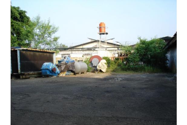 Pabrik Kapuk Kamal Muara (Ukuran 3 Ha) 20965126