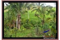 sangat Murah Langka Tanah 7.100 m2 di Tabanan Selemadeg A240