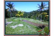 Super Spesial Murah Tanah 1.900 m2 di Ubud Tegalalang #505