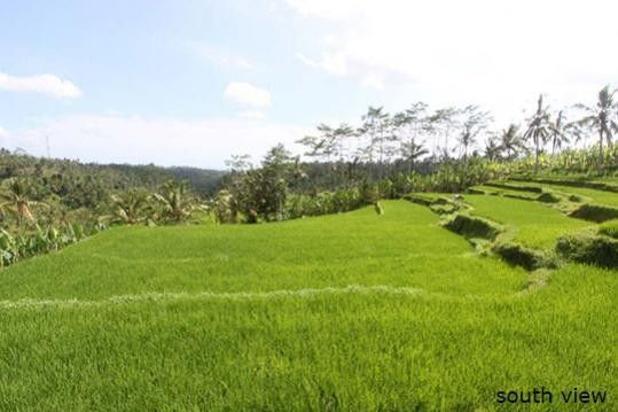Rp33,7mily Tanah Dijual