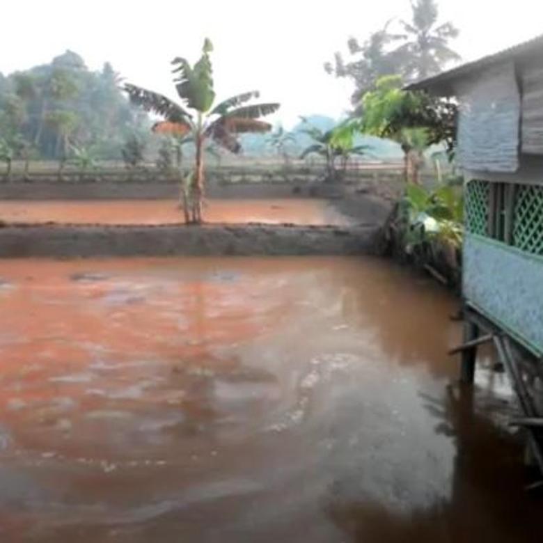 Dijual Empang Kolam Ikan 280rb/m2 Jl AMD Babakan Ciseeng Bogor