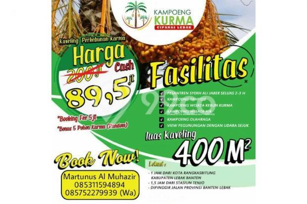Kavling Luas Harga Murah Bonus 5  Pohon Kurma 12398162