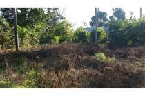 Jual cepat tanah perkebunan 9.034 m2 SHM cocok untuk gudang/pabrik