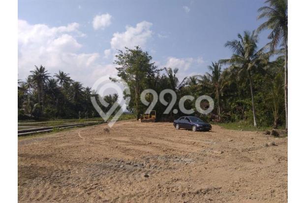 Kavling 900 Ribu-an Dekat Bandara Baru Temon, Bertahap 12X Bunga 0 % 17713695